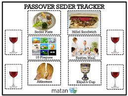 passover plague toys tips for hosting a disabilities friendly seder