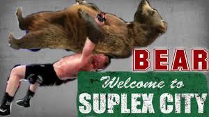 Brock Lesnar Meme - brock lesnar takes a bear to suplex city wrestling memes package