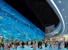 dubai mall aquarium 2013 hd wallpaper of city hdwallpaper2013 com