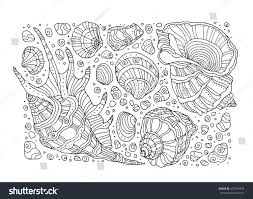 seashell pattern art background vector illustration stock vector