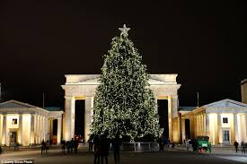 most popular christmas tree lights mailonline travel reveals the best christmas trees in the world