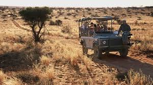 african safari car south africa safari u0026 holiday information natural world safaris