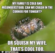 Afraid Of Spiders Meme - so you re not afraid of spiders