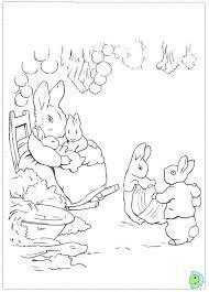 peter rabbit coloring dinokids org