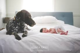 dc photographers the 5 best newborn photographers in dc hush baby newborn