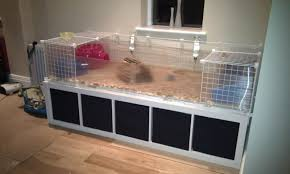 Guinea Pig Cages Cheap Proudly Presenting My C U0026c Cage Pic Heavy The Guinea Pig Forum