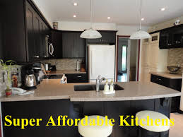 Affordable Kitchen Cabinets by Download Affordable Kitchens Gen4congress Com