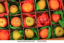 mail order fruit orange order stock images royalty free images vectors