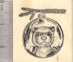 102 best хорек images on pinterest ferret animals and drawing