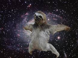 Sexy Sloth Meme - gif funny animals trippy sexy hot weird psychedelic space stars