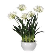artificial flowers white agapanthus plant artificial flowers