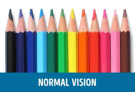 How Is Color Blindness Caused Are You Colour Blind These Incredible Images Reveals How The
