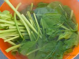 cuisiner blettes feuilles de blettes farcies marlyzen cuisine revisitée