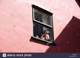 K He In Pink Paddington Bear Toy Stock Photos U0026 Paddington Bear Toy Stock