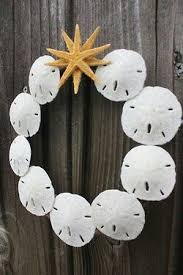 best 25 sand dollar crafts ideas on sand dollars