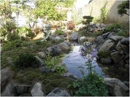 backyards superb garden design with backyard water feature ideas
