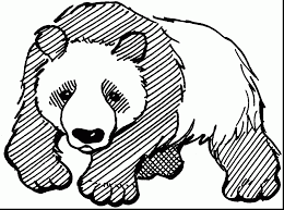 astonishing panda bear coloring pages alphabrainsz net