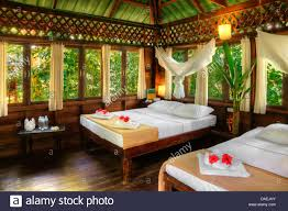 interior view of a tree house in the rainforest thailand sura