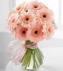 gerbera bouquet alcantara online flower shop florist gift delivery in cebu