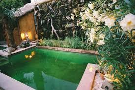 chambres d hotes uzes et environs le jardin partagé avec bassin et piscine en plein centre d uzès