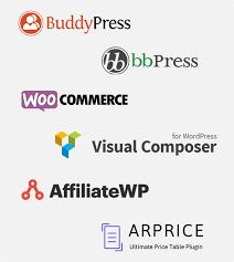 armember wordpress membership plugin by reputeinfosystems