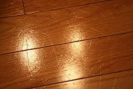 Best Flooring For Pets Last Chance Dogs And Hardwood Floors Floor Scratches Www