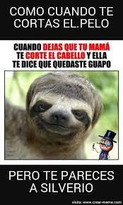 Lemur Meme - meme silver lemur memes en internet crear meme com