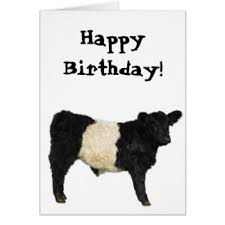 cow greeting cards black and white cow greeting cards zazzle co uk