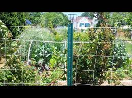 setting up a nylon garden trellis youtube