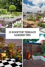 21 rooftop terrace garden tips to turn it into an urban oasis