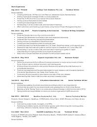 professional resume for experienced business analyst technical writer