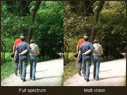 Red Green Color Blind Simulator How A Colour Blind Person Sees The World Matt Wilcox Net