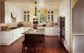 appealing ideas kitchen cabinet doors at home depot hypnotizing