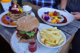 eco activities in sydney sydney favorite vegan spots activities in sydney vegan traveler blog