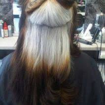 growing out gray hair grey hair salondisegno