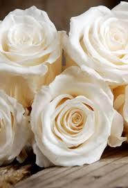 Rose Bouquet Fuchsia 9in Valentine U0027s Day