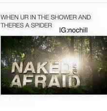 Shower Spider Meme - when ur in the shower and theres a spider ignochill nak afrat
