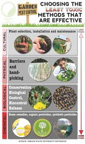 natural garden pest control a healthier u0026 safer solution