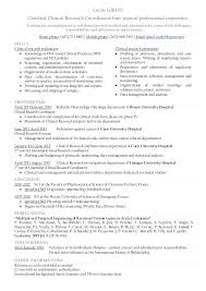resume employment authorization 7 examples of birth certificates