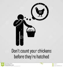Don Count The Chicken Before They Hatch Do Not Count Your Chickens Before They Are Hatched Stock Vector