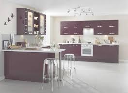 meuble de cuisine aubergine meuble de cuisine violet delinia leroy merlin pertaining to