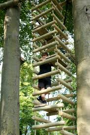 Cool Bird House Plans Bird Nests And Tree Houses On Pinterest Arafen