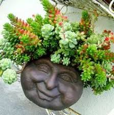Hanging Succulent Planter by Wall Head Planter My Yard Pinterest Nice Planters And Deco