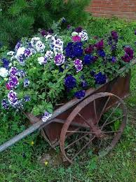 reclaimed old wheels and summer flowers make beautiful garden