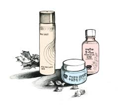 big in korea waterless skin care into the gloss