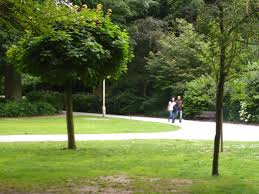 file a walk in the park jpg wikimedia commons