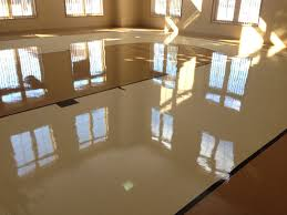 floor stripping waxing buffing il