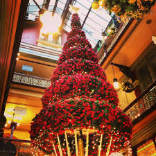 a christmas themed tour of sydney sydney