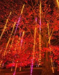Rochester Michigan Christmas Lights by 30 Great Places To See Holiday Lights Midwest Living