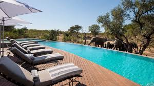 Outside Pool Andbeyond Ngala Safari Lodge Kruger Big Five South Africa